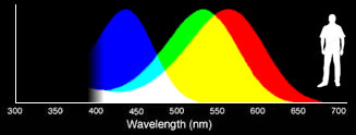 Human eye wavelength sensitivity